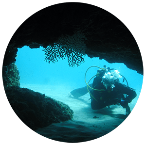 Assistant instructor / Dive Control Specialist