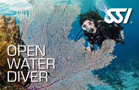 owd open water diver ssi course plancton diving ametlla de mar