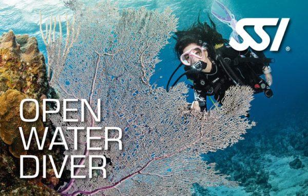 owd open water diver ssi course plancton diving ametlla de mar